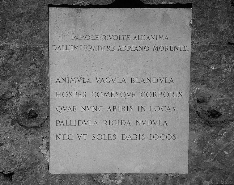 Animula,_vagula,_blandula_(13307208213)