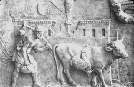 agricultor romano