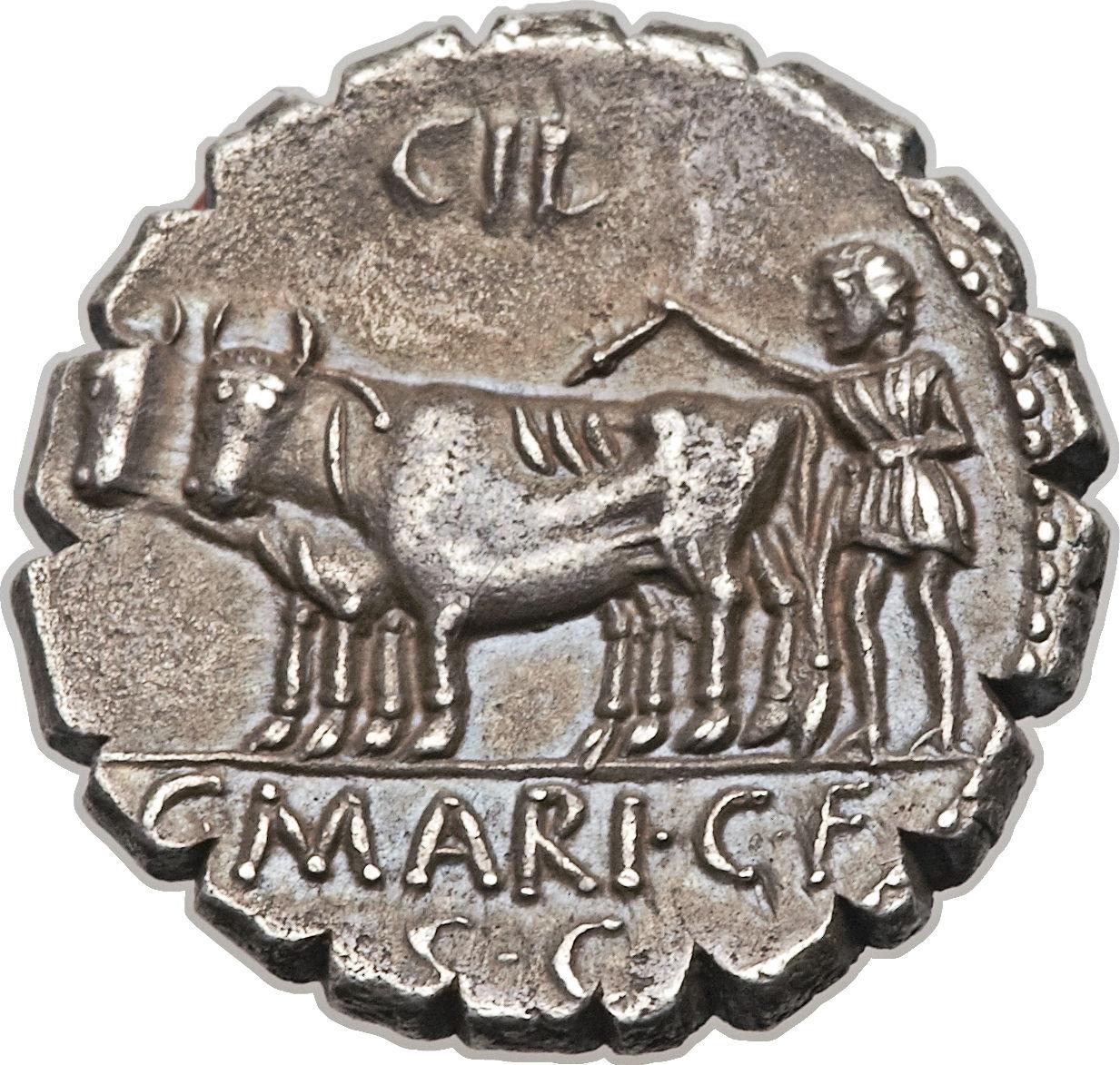 marius g3383