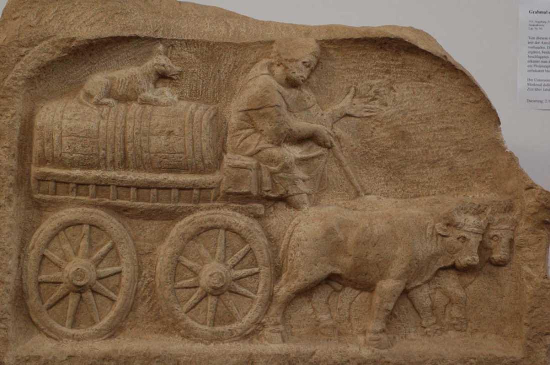 Roman-wine-trade-Augsburg-Romam-Museum
