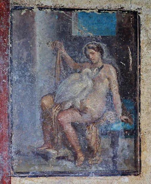 Leda-Swan-Pompeii