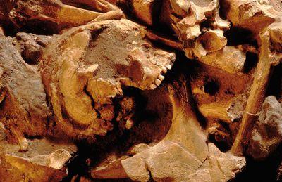 teutoburg csm_2015-02-16-Archaeologie_Knochen1_2fe2fe6301