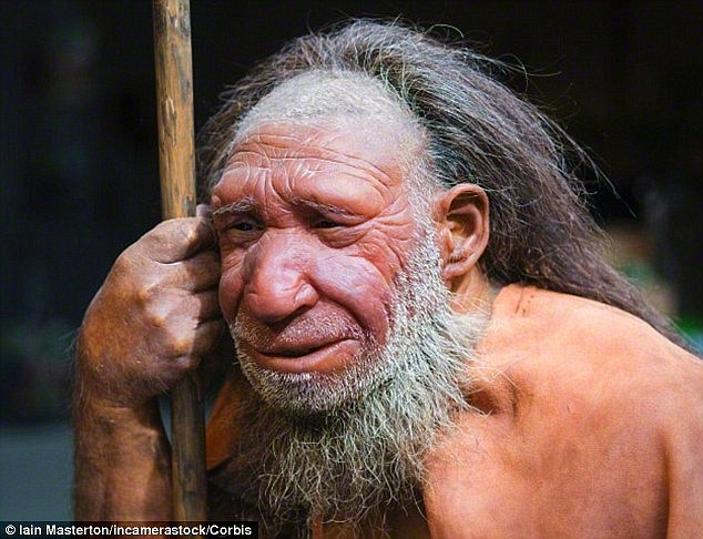 neandert